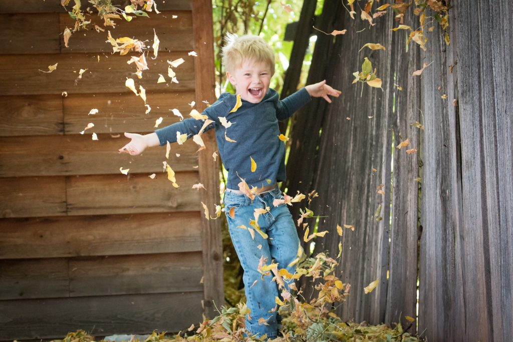 Boy Outdoors Jumping in a Pile of Leaves During Fall
